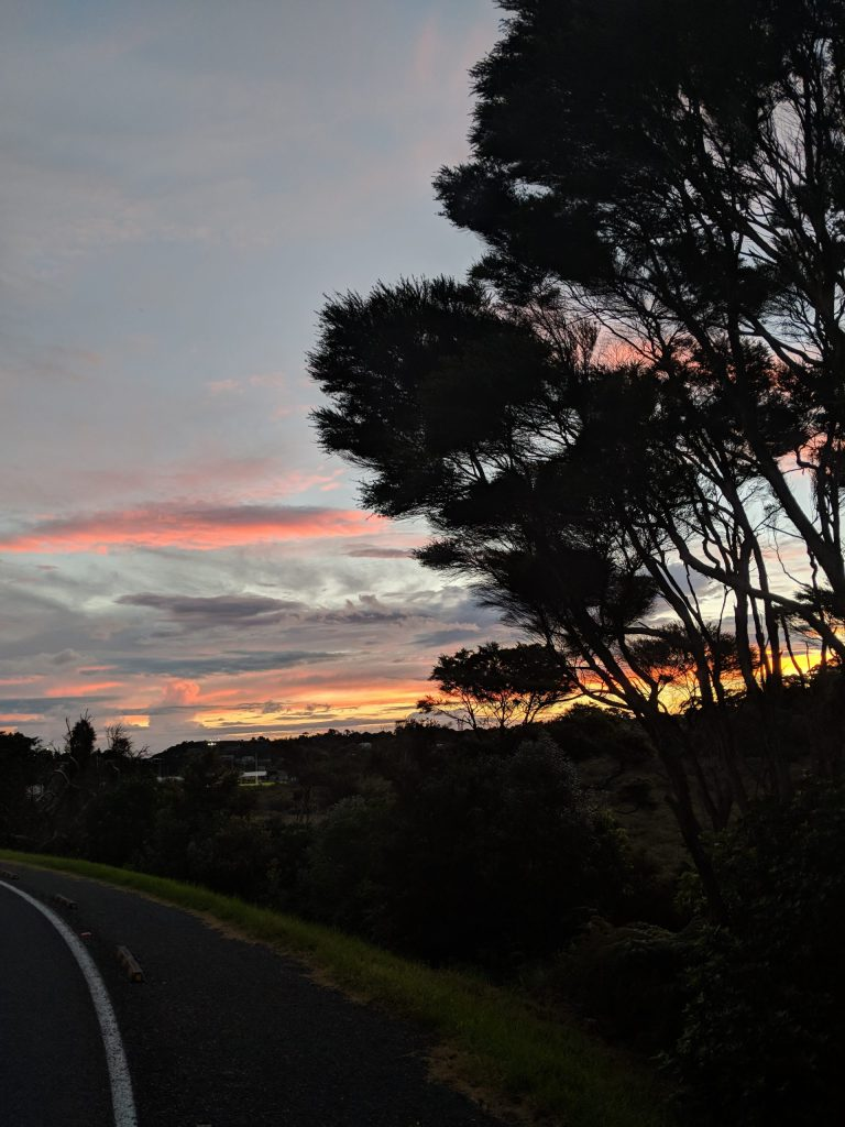 new zealand, nz, auckland, waiheke island, how to travel, southern hemisphere, tan, olivia cox, travel inso, holiday inso, travel review, travel influencer, travel blogger