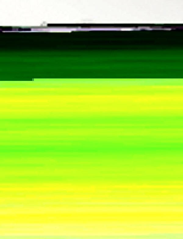 John Simpson - Broken Horse