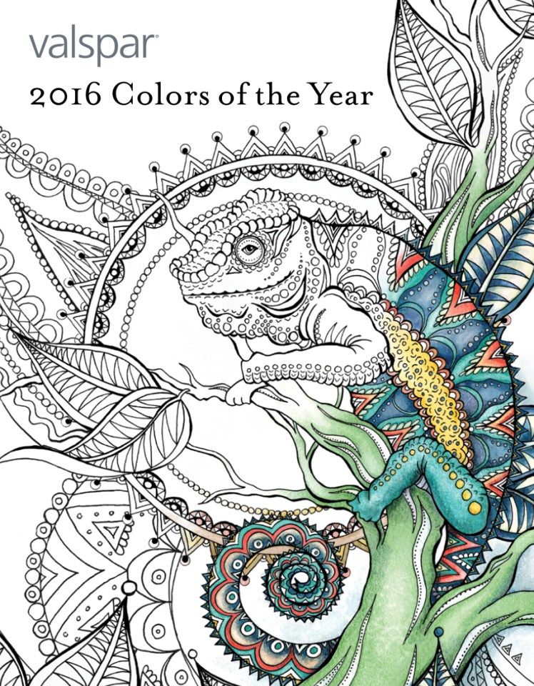 Valspar Press Kit illustrated coloring book