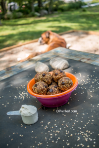 Oatmeal chocolate chip cookie protein bites