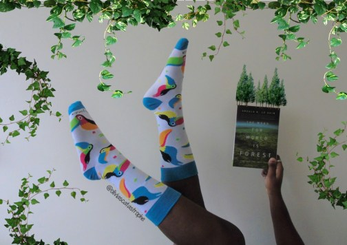 toucan sock panda socks and the word for world is forest book