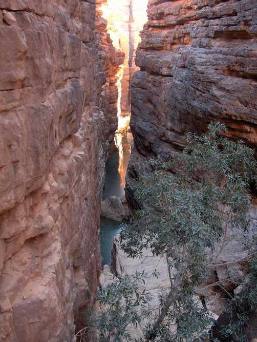 Guelta permanente au fond du cañon de Talahouat, le 10 mars 2006