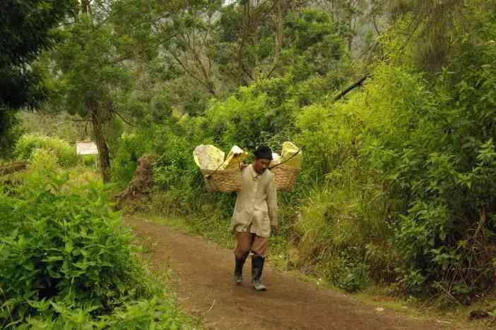 Porteur de soufre au pied du Kawa Ijen, le 16 juillet 2007