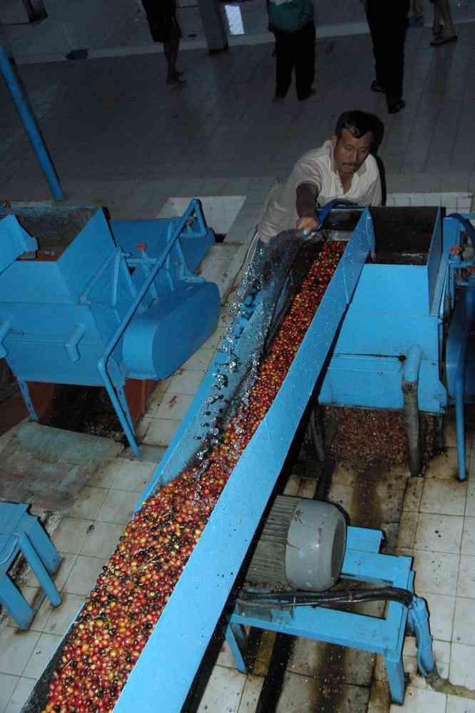 L'usine de café de Blawan, le 16 juillet 2007