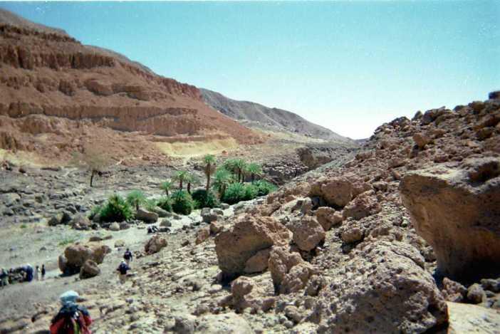 La petite oasis de Yi Yerra (22 février 1998)