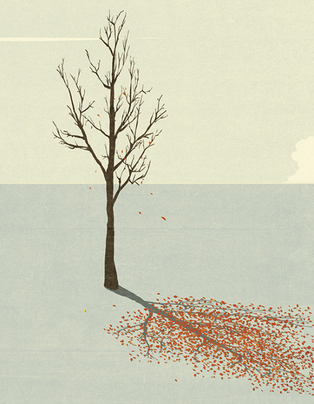 alberoanna Andrea Ucini