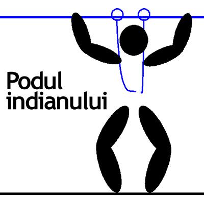 V-indian