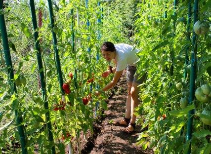 2012 Aventura Parc notre petit jardin bio pour nos clients