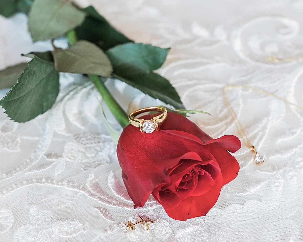 Olivine Fox - Disney Princess Wedding Inspiration - Helena Montana Wedding Photographer - Beauty and the Beast Themed Wedding
