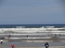 Typical Muizenberg - loads of beginners and good long boarders. Some very nice waves in Winter