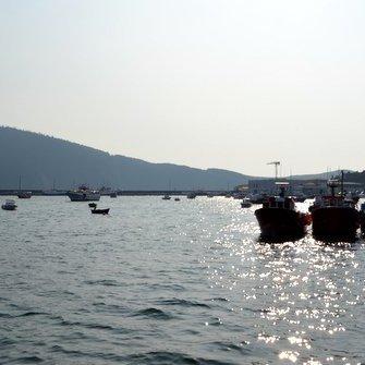 A Federación de Confrarías de Pescadores acordou convocar unha manifestación nacional contra as políticas da Xunta de Galiza