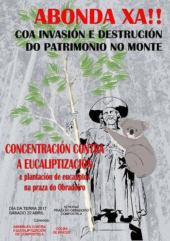 """Plantación simbólica de eucaliptos no Obradoiro como denuncia contra a """"eucaliptización"""" de Galiza"""