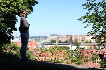 Kronan view