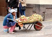 19 cusco tuna fruit saleslady
