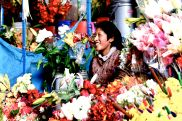 25 cusco market flower vendor