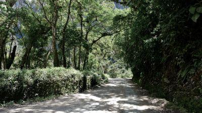 30 machu picchu path