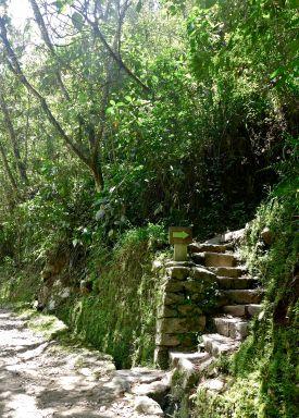 34 machu picchu hike staircase