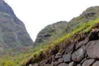 52 machu picchu wall