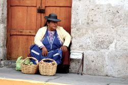 45 arequipa fruit lady