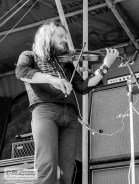 Paroni Paakkuna ja viulu, Vaasa Youth Festival 1971