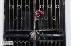 Sign of love in the gate of the cemetery island of San Michele.