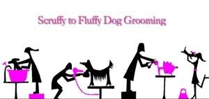 Scruffy to Fluffy