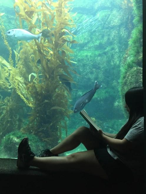 Reading at the aquarium