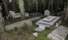 Αυτό που κουνιόταν δίπλα στον τάφο ήταν… (βίντεο)