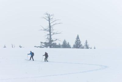 Cross Country Skiing at Edith Lake in Kamloops, BC