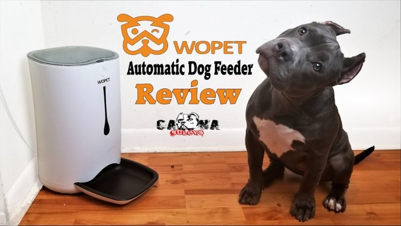 American Bully Product Review: Automatic Dog Feeder By Wopet — Honest Review — Pitbull Tested