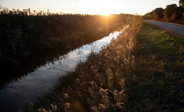 Rural America's Own Private Flint: Polluted Water Too Dangerous to Drink