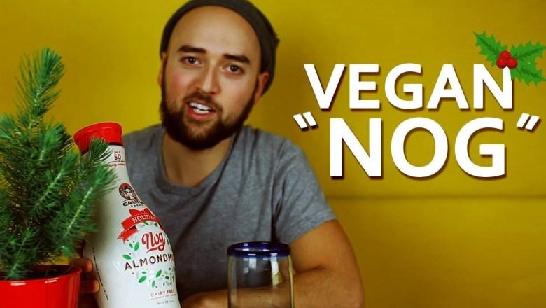 VEGAN NOG Taste Test   Plant Based Holiday Beverage Review