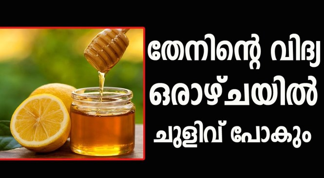 Honey Face Masks To Treat Wrinkles On Face | Health tip malayalam