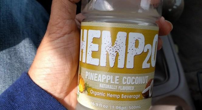 HEMp20 (hemp beverage review)