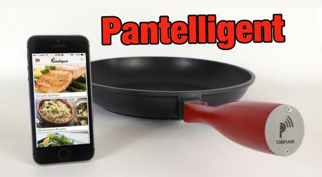 Pantelligent – PRODUCT REVIEW