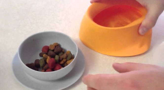 Sleepypod Yummy Travel Bowls Product Review, video 1