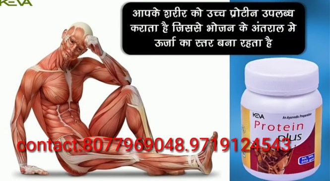 Keva protein plus, keva body health products, keva best product in India, keva natural protein plus