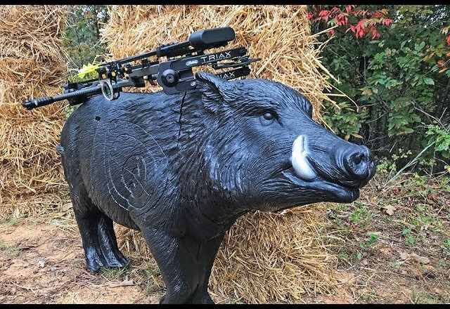 Delta McKenzie Wild Boar Product Review