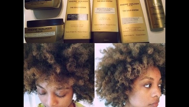 """Andre Walker """"The Gold System"""" Product Review"""