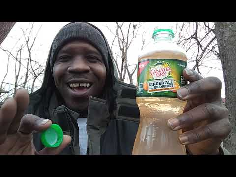 New Canada Dry Ginger Ale Orangeade ( Beverage Review)