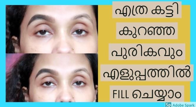 നിങ്ങൾ ചോദിച്ച eyebrow   product review|karimashiloverlatest|Malayalambeauty