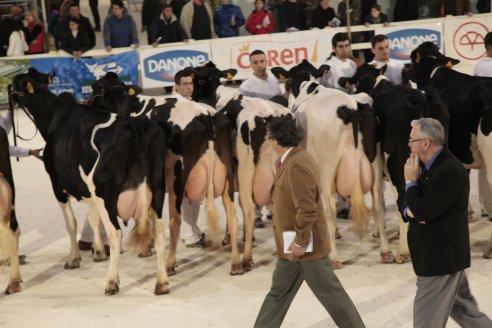 concurso-frison-gandagro-2010