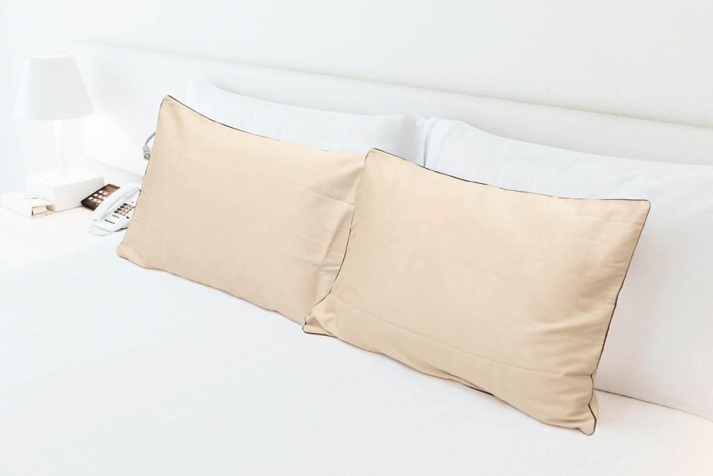 Eculage Antibacterial Pillowcase