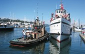 Olympia Harbor Days
