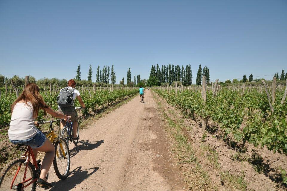 mendoza argentine vignobles vin bodega