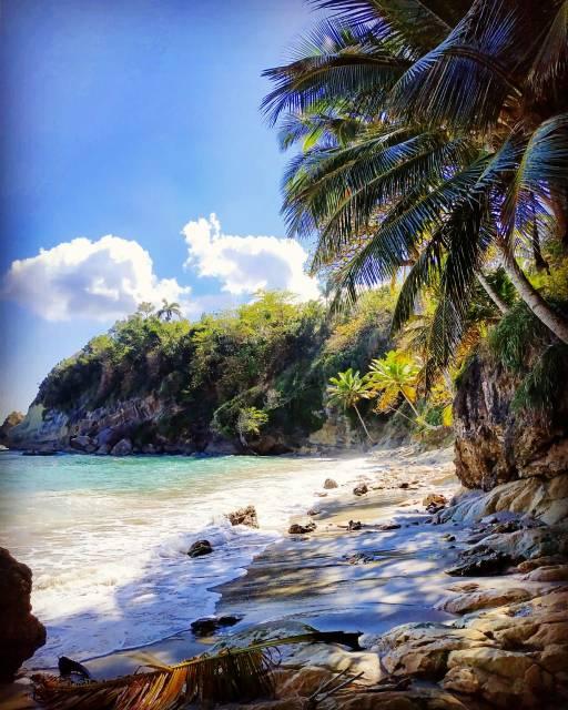 Plage de rêve dominicaine dream beach paradise dominican
