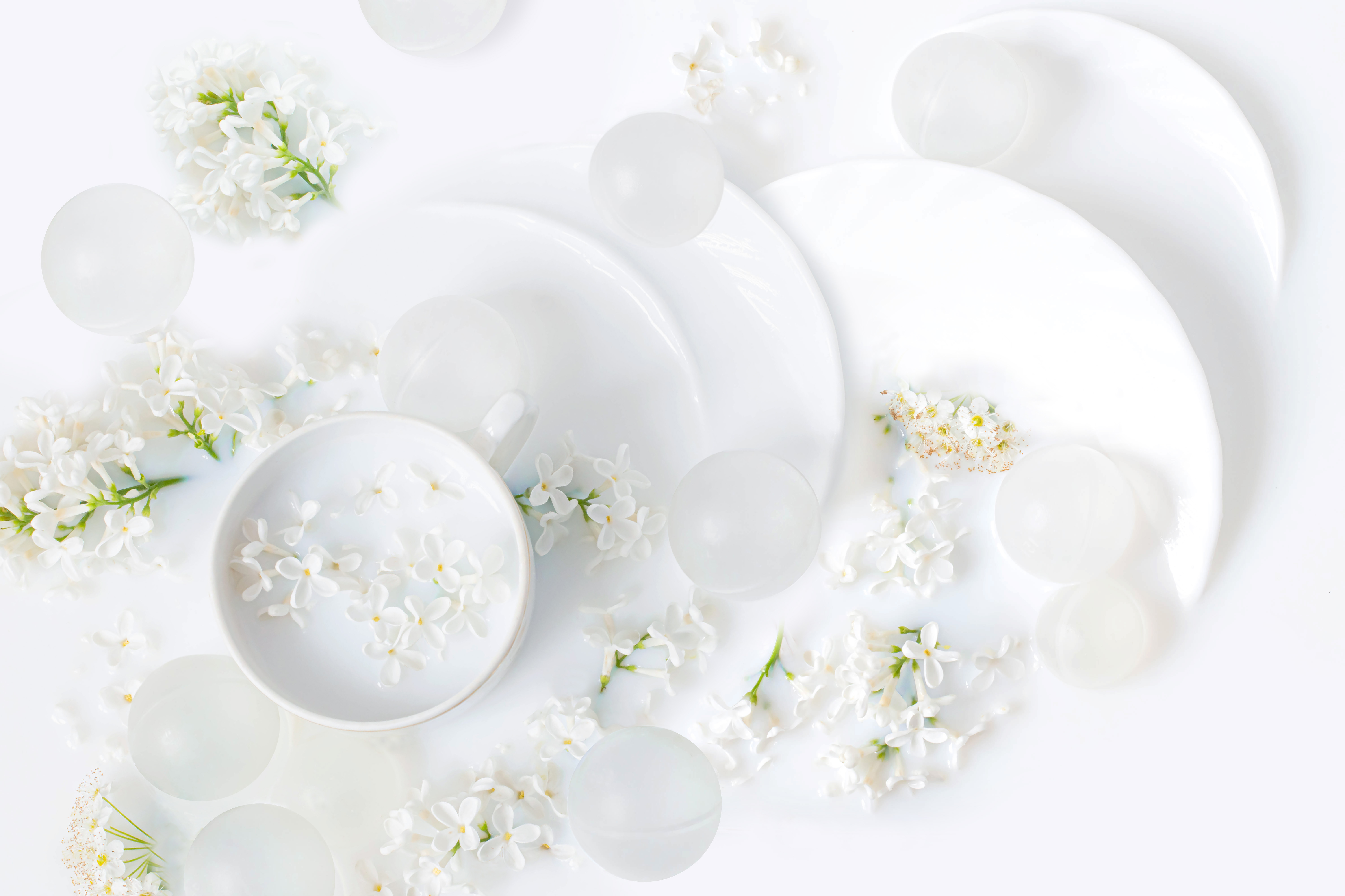 Flowers of white lilac and tea utensils in milk