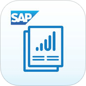 SAP Roambi Flow Icon