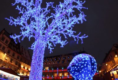 L'arbre_bleu_place_Gutenberg