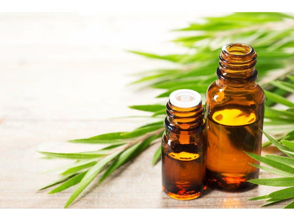 Tea Tree Oil. © Up nature.com